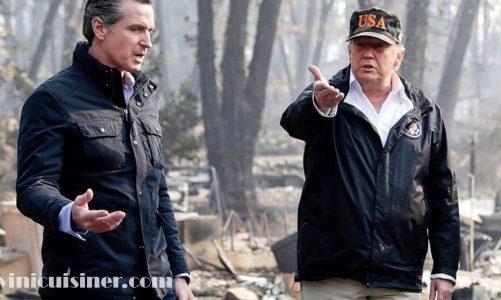 หน่วยงานของรัฐบาลกลาง ล้มเหลวในเป้าหมายการปกป้องป่า