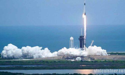 SpaceX เปิดตัวสัตว์จิ๋ว แผงโซลาร์เซลล์สู่สถานีอวกาศ