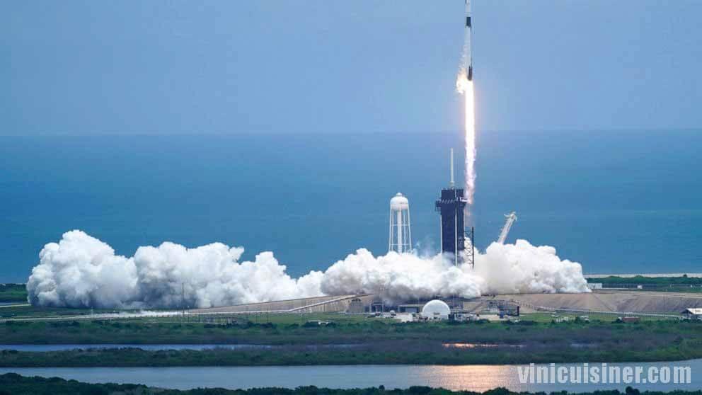 SpaceX เปิดตัวสัตว์จิ๋ว แผงโซลาร์เซลล์สู่สถานีอวกาศ SpaceX ได้เปิดตัวสัตว์ทะเลขนาดเล็กหลายพันตัวไปยังสถานีอวกาศนานาชาติในวันพฤหัสบดี